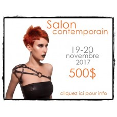 SALON CONTEMPORARY * November 12-13, 2017 (MONTREAL, QC)